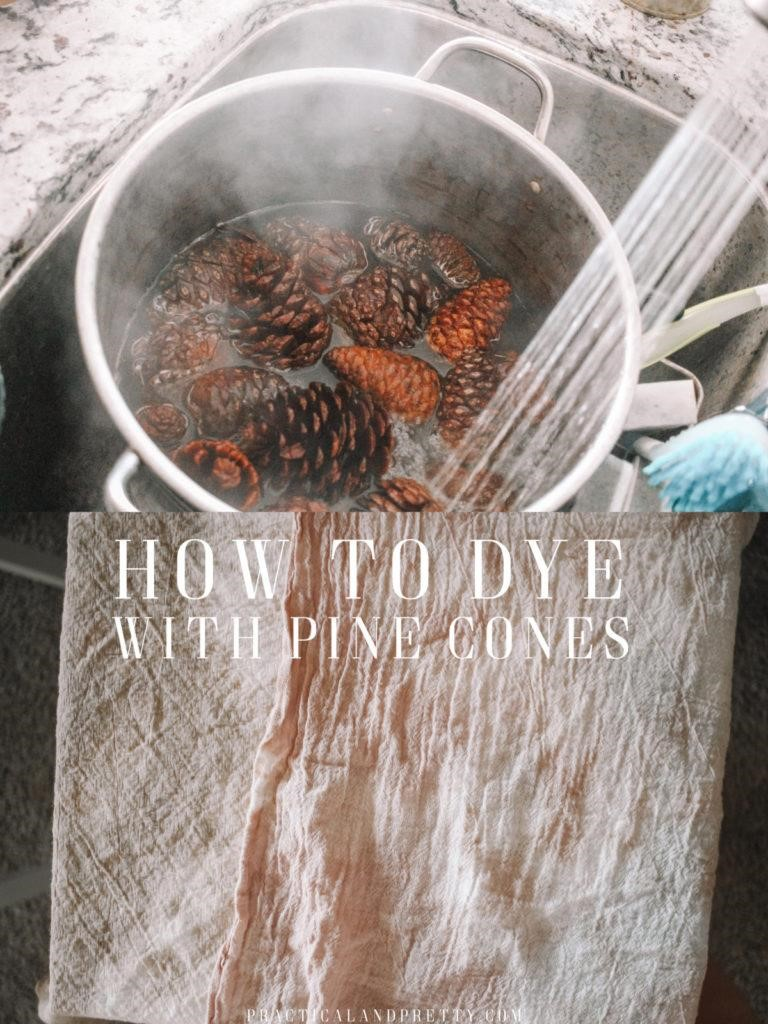 How to Dye Pine Cones