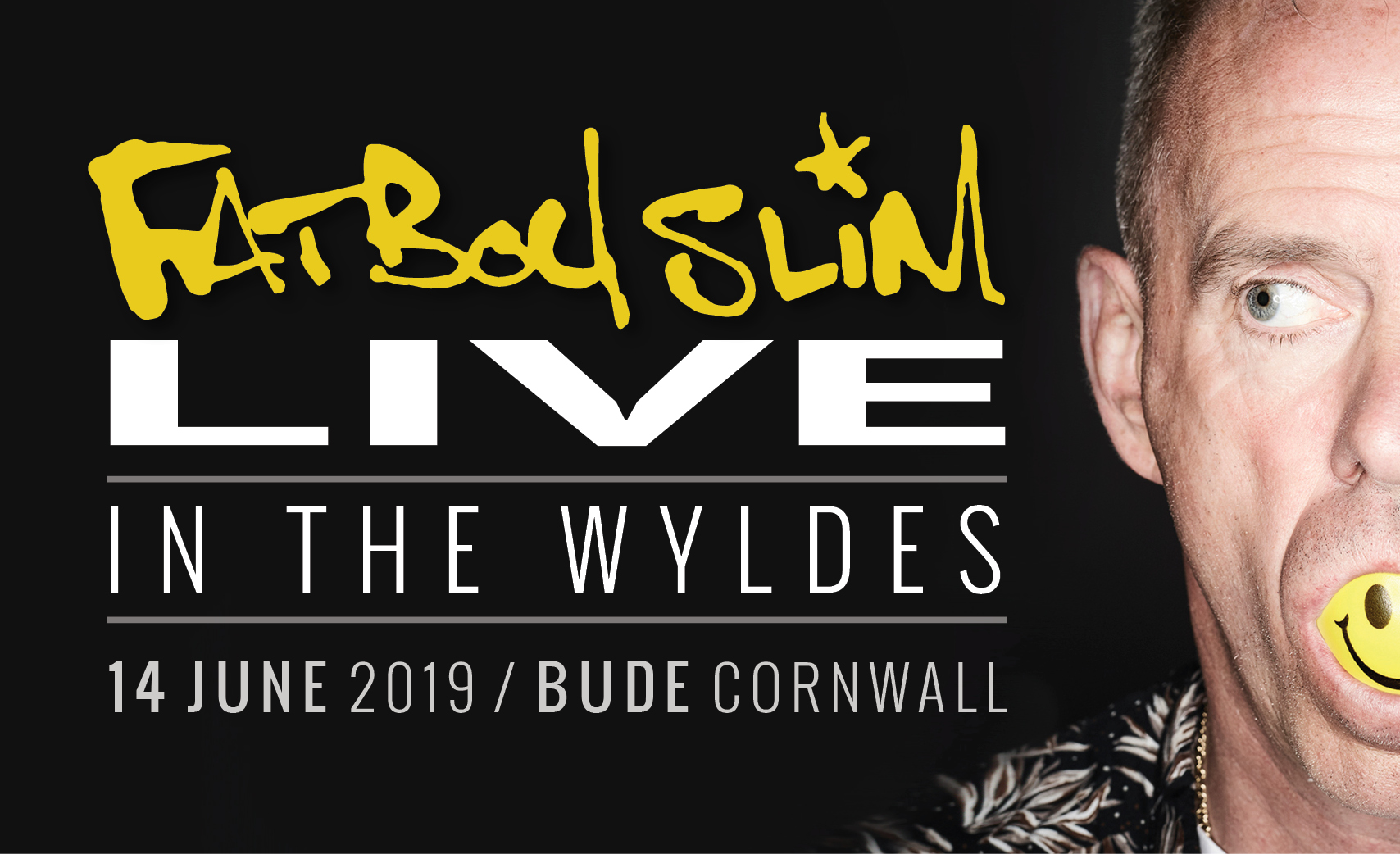 Fatboy Slim at Live In The Wyldes 2019