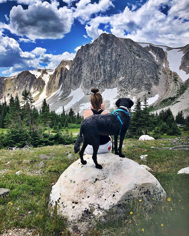 Our backyard is cooler than yours 🐩🏔🛶 #medicinebowpeak #wyohomeing