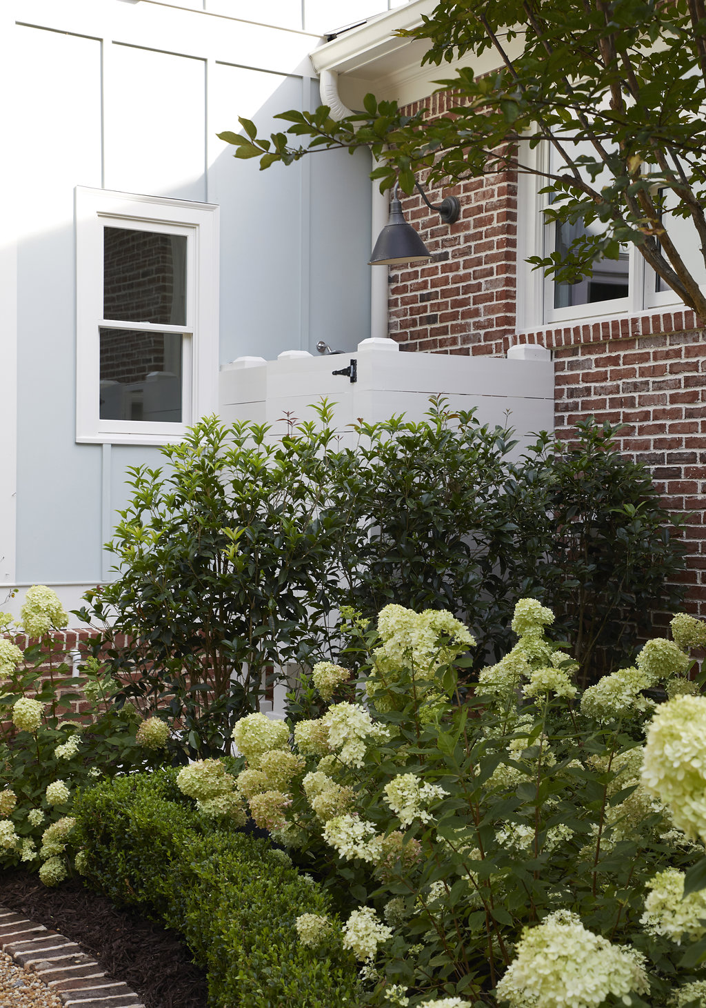 Hydrangea bushes and trees next to the home.