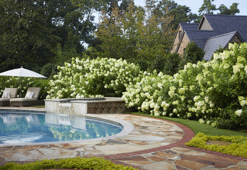 Blooming flower bushes surround the pool.