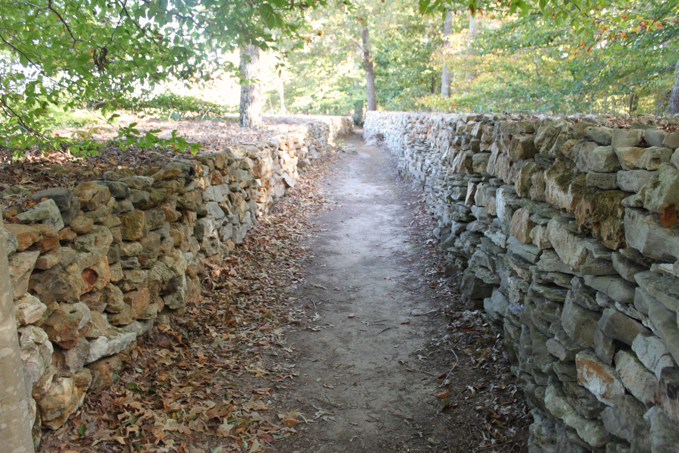 Tom's Wall.JPG