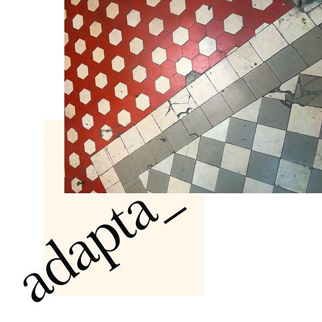 Un an après, Adapta va déménager dans un ancien atelier de maroquinerie adossé à nos copines de chez @naodeparis 🙌🏻 Un an après, Adapta va recruter son premier stagiaire. Un an après, Adapta va lancer son site e-commerce pour cette rentrée. Un an après, plein de projets en cours et toujours la patate à l'idée de développer un sourcing plus innovant, dans une démarche d'éco conception💪🏻 . . . #happyoneyeartous #entrepreneuriat  #entrepreneurship #upcycledleather #leather #cuir #cuirnoble #matieredurable #highqualityleather #upsourced #circulareconomy #sustainability #nothinggoestowaste #virtuouscircle #highlight #creativity #fashion #slowfashion #rethinkingthesystem