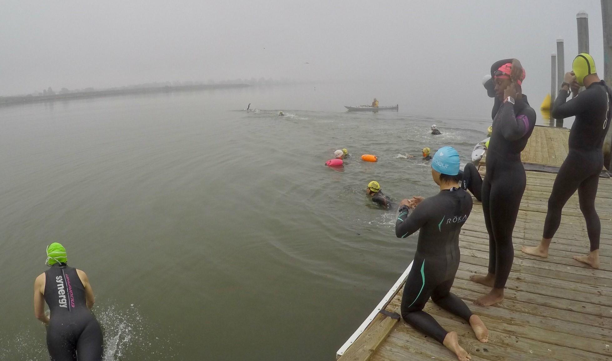 Odyssey Open Water Swimming Berkeley Angela Stockard