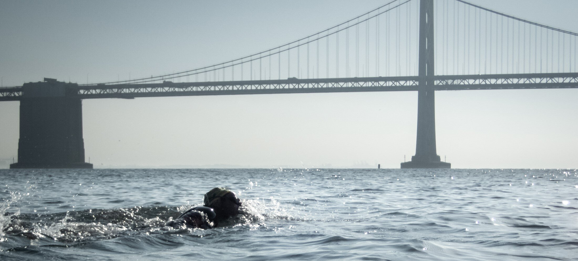 Bridge to Bridge Swim FAQs