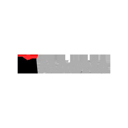 magna_new.png