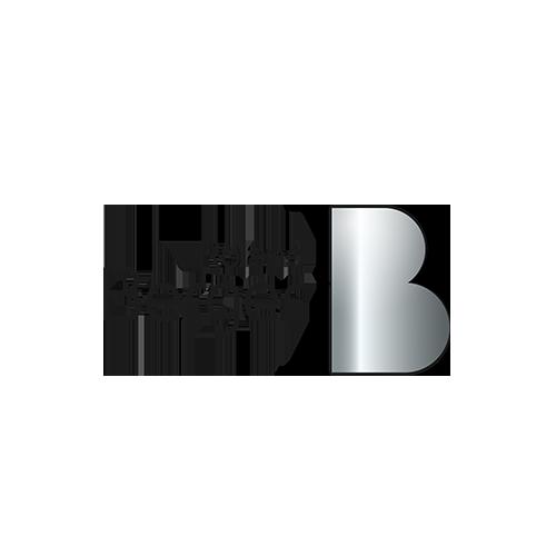 rolandberger_new.png