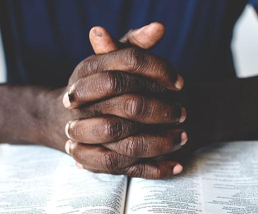 Bible-Briefs-515x428-min.jpg