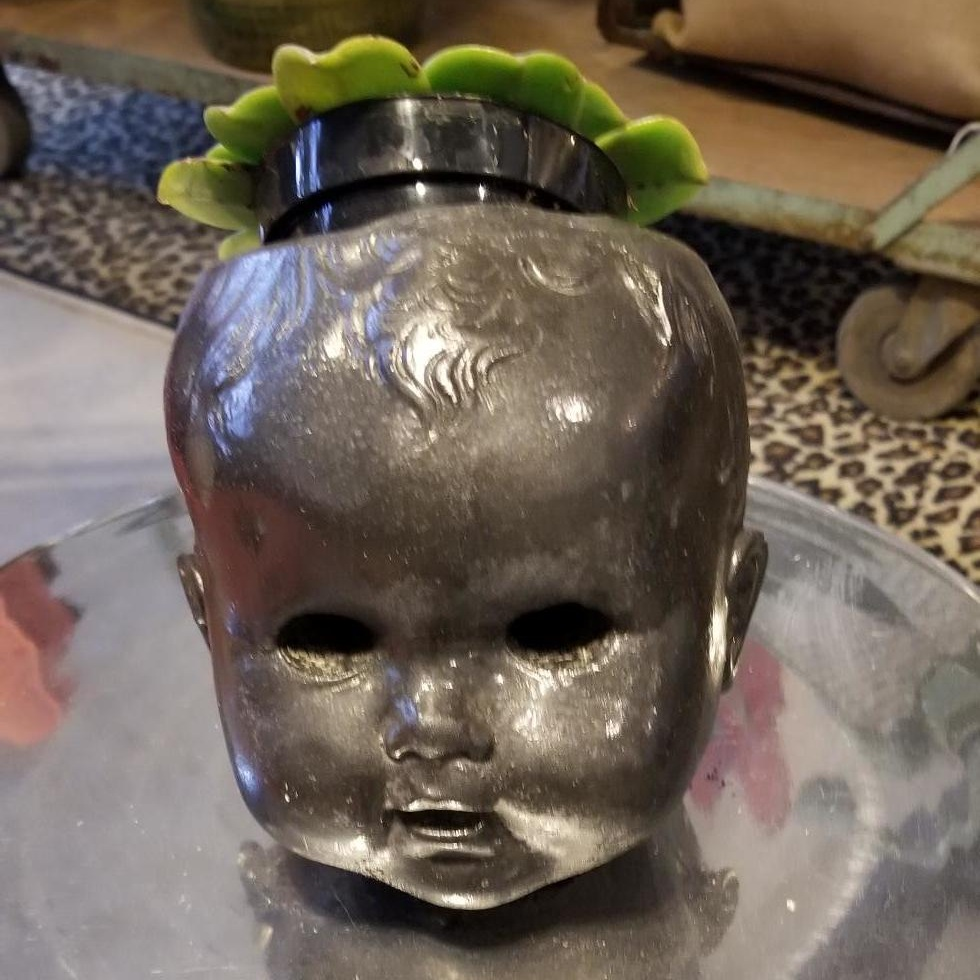 I truly cannot explain my fascination with this creepy baby head planter but I saw it in passing one day and scoured the Earth for it the next. I HAD TO HAVE IT. Planted with a succulent, it's destined to be that one quirky thing in someone's home that catches everyone's eye.