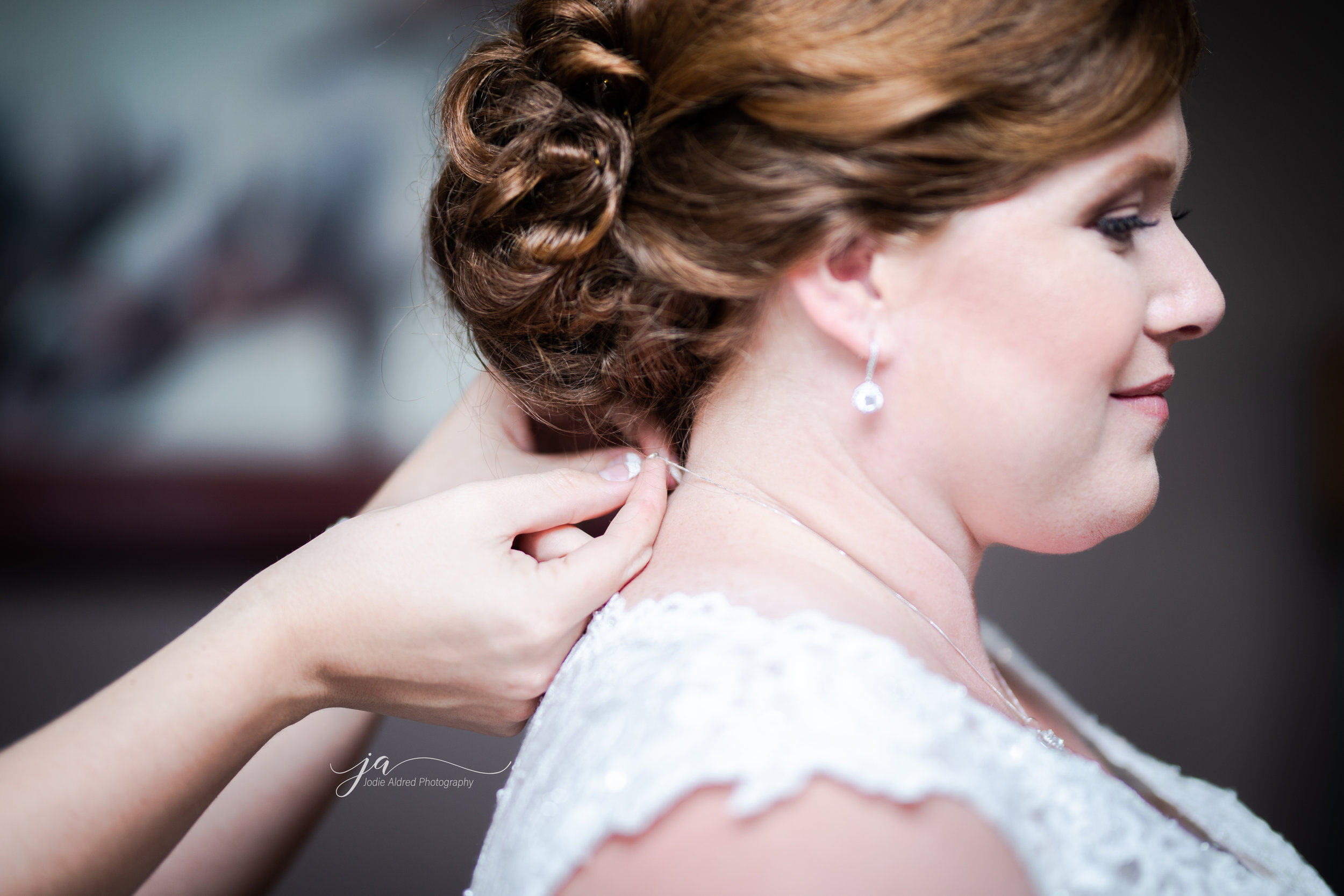 Details-Sister-Wedding-Jodie-Aldred-Photography-Chatham-Kent-Elgin-Middlesex-London-Ontario.jpg