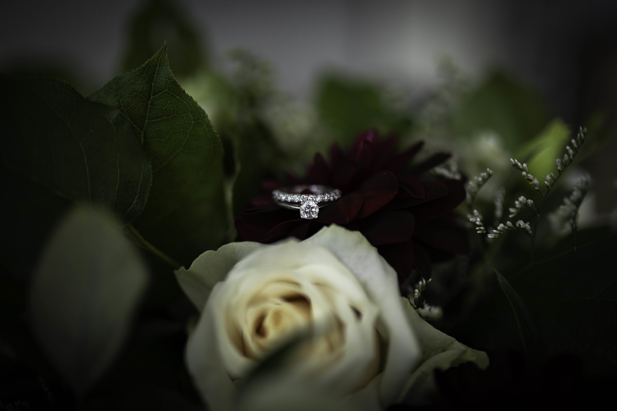Ring-Wedding-Jodie-Aldred-Photography-Chatham-Kent-Elgin.jpg