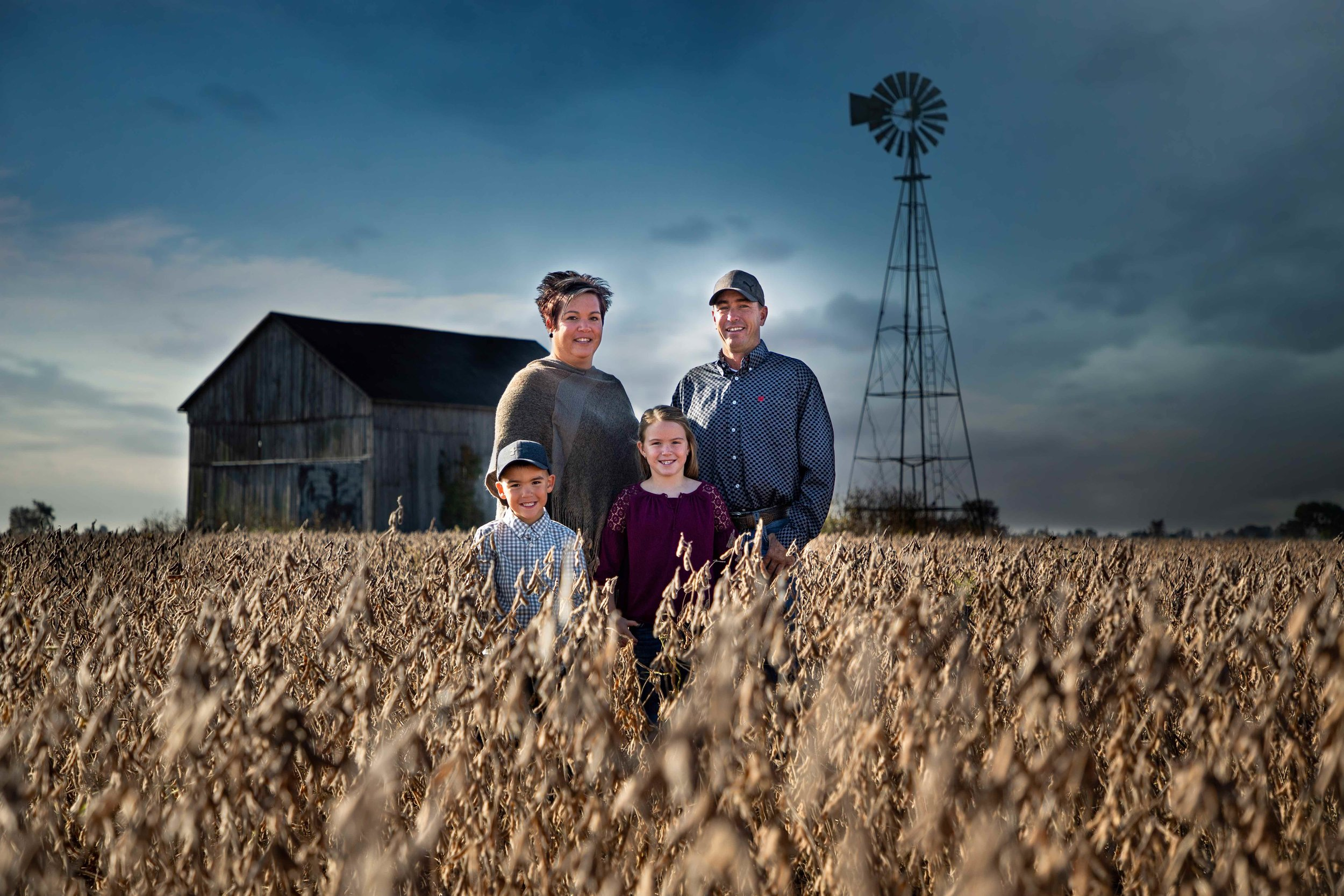 Jodie-Aldred-Photography-Chatham-Kent-Elgin-Middlesex-London-Ontario-Farm-Family-barn-soybeans.jpg