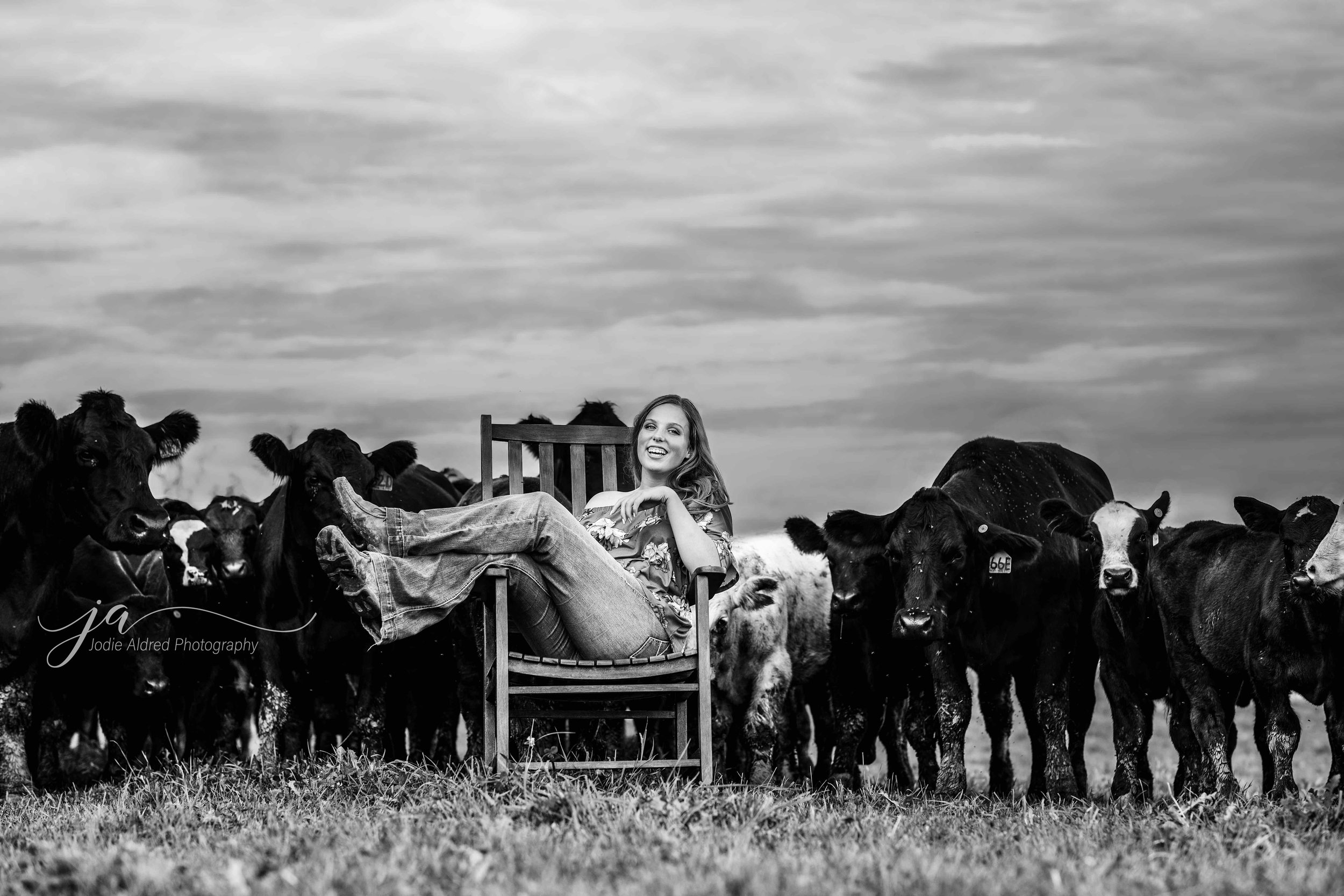 Jodie-Aldred-Photography-Chatham-Kent-Elgin-Middlesex-London-Ontario-Farm-Family-cattle-girl.jpg
