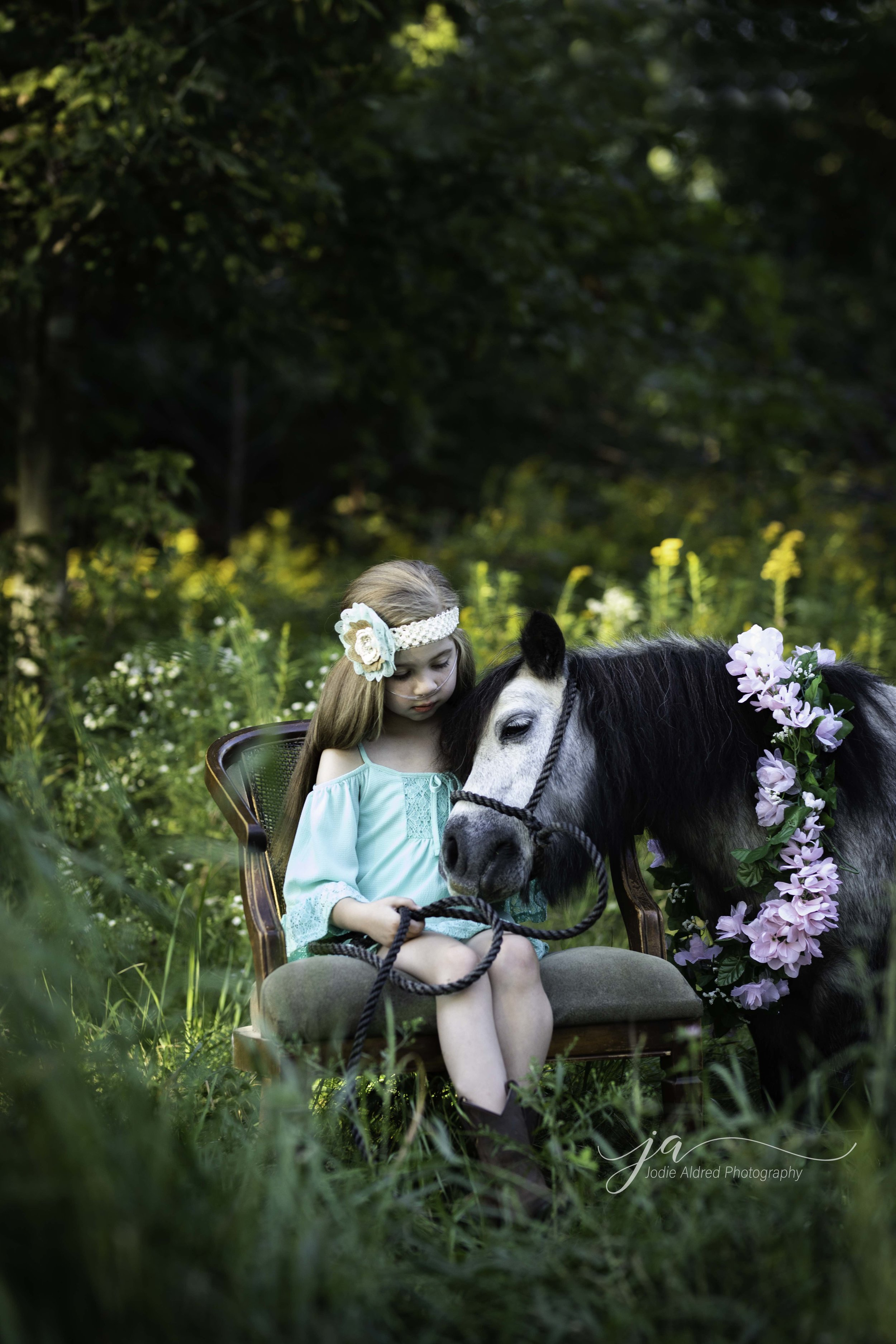 Jodie-Aldred-Photography-Chatham-Kent-Elgin-Middlesex-London-Ontario-Farm-Family-horse.jpg