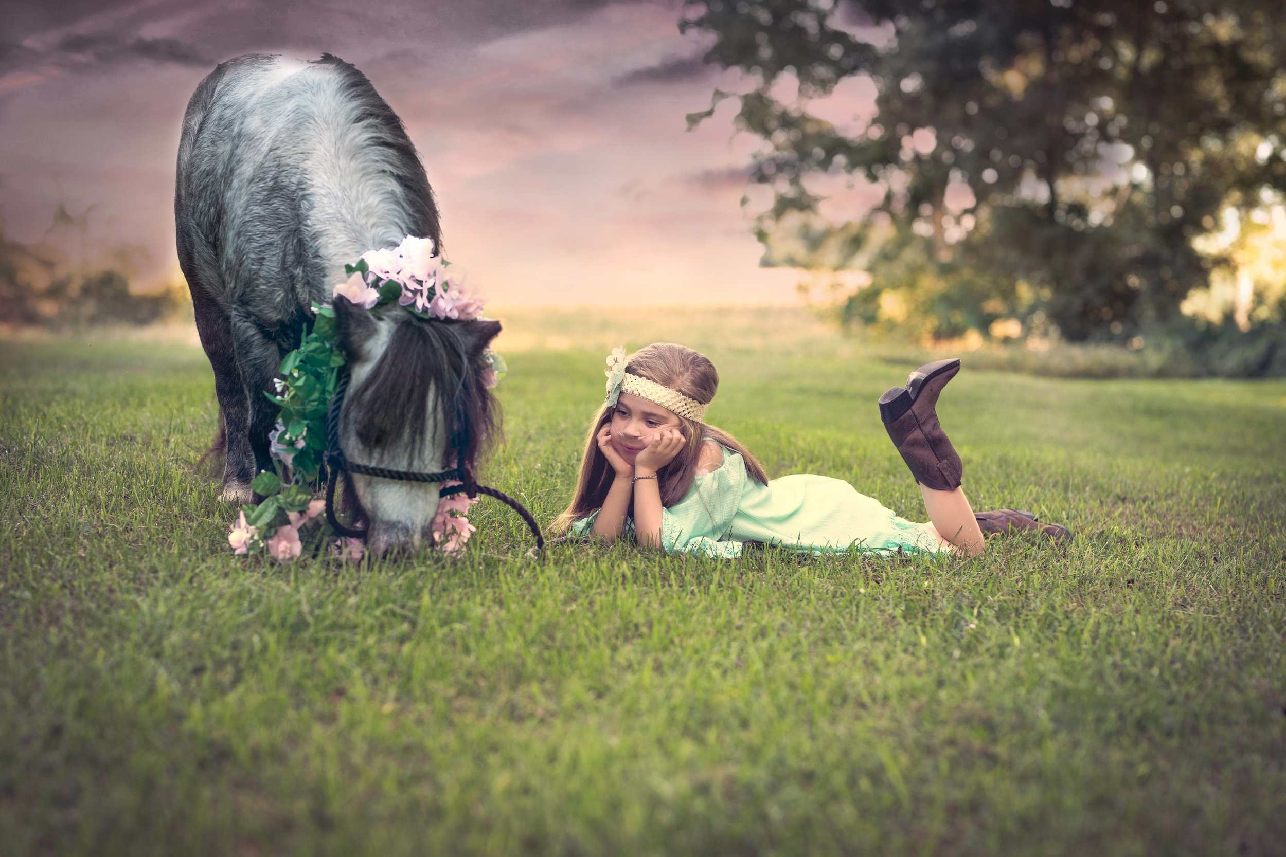 Jodie-Aldred-Photography-Chatham-Kent-Elgin-Middlesex-London-Ontario-Farm-Family-horse-sunset.jpg