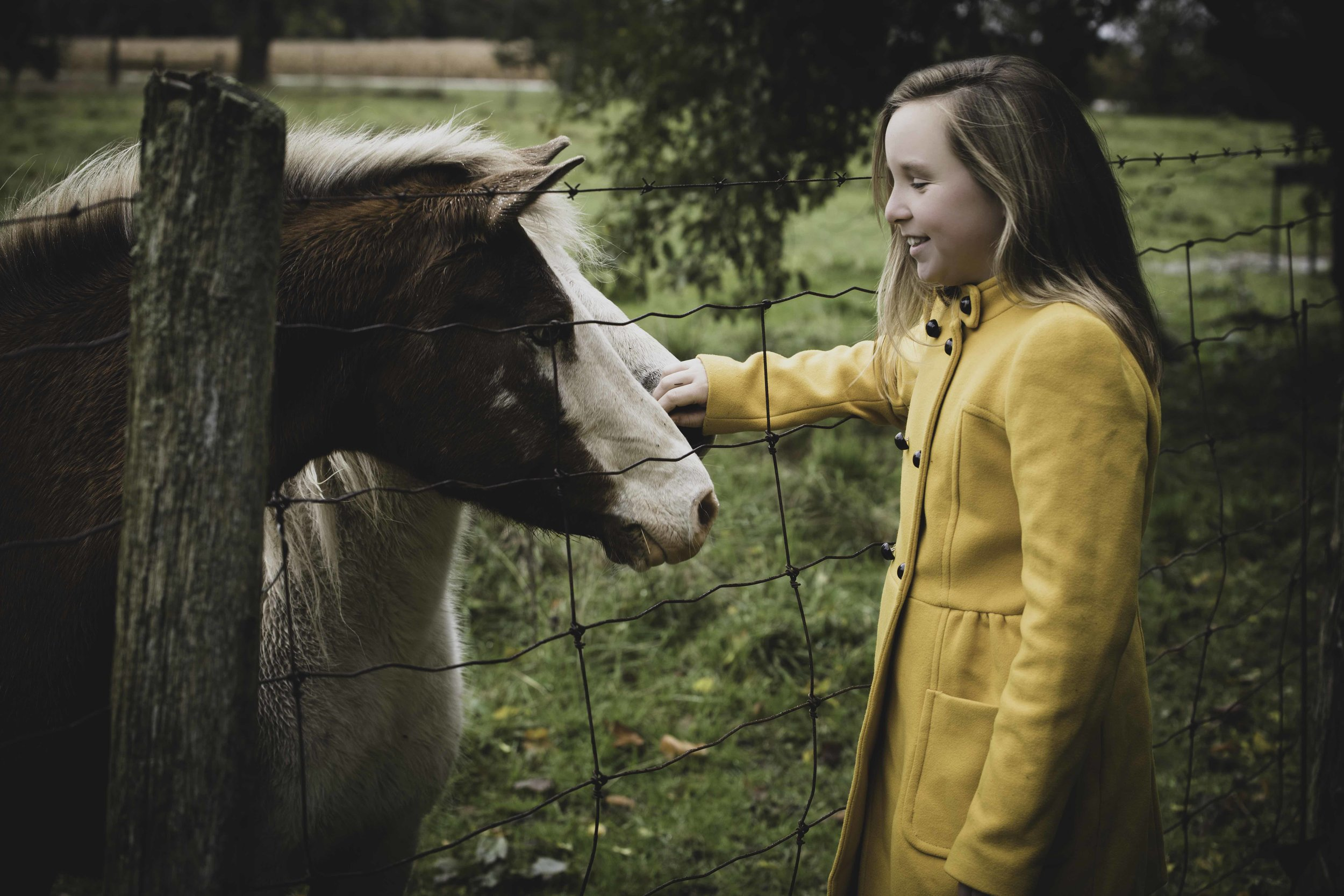 Jodie-Aldred-Photography-Chatham-Kent-Elgin-Middlesex-London-Ontario-Farm-Family-horse-yellow.jpg