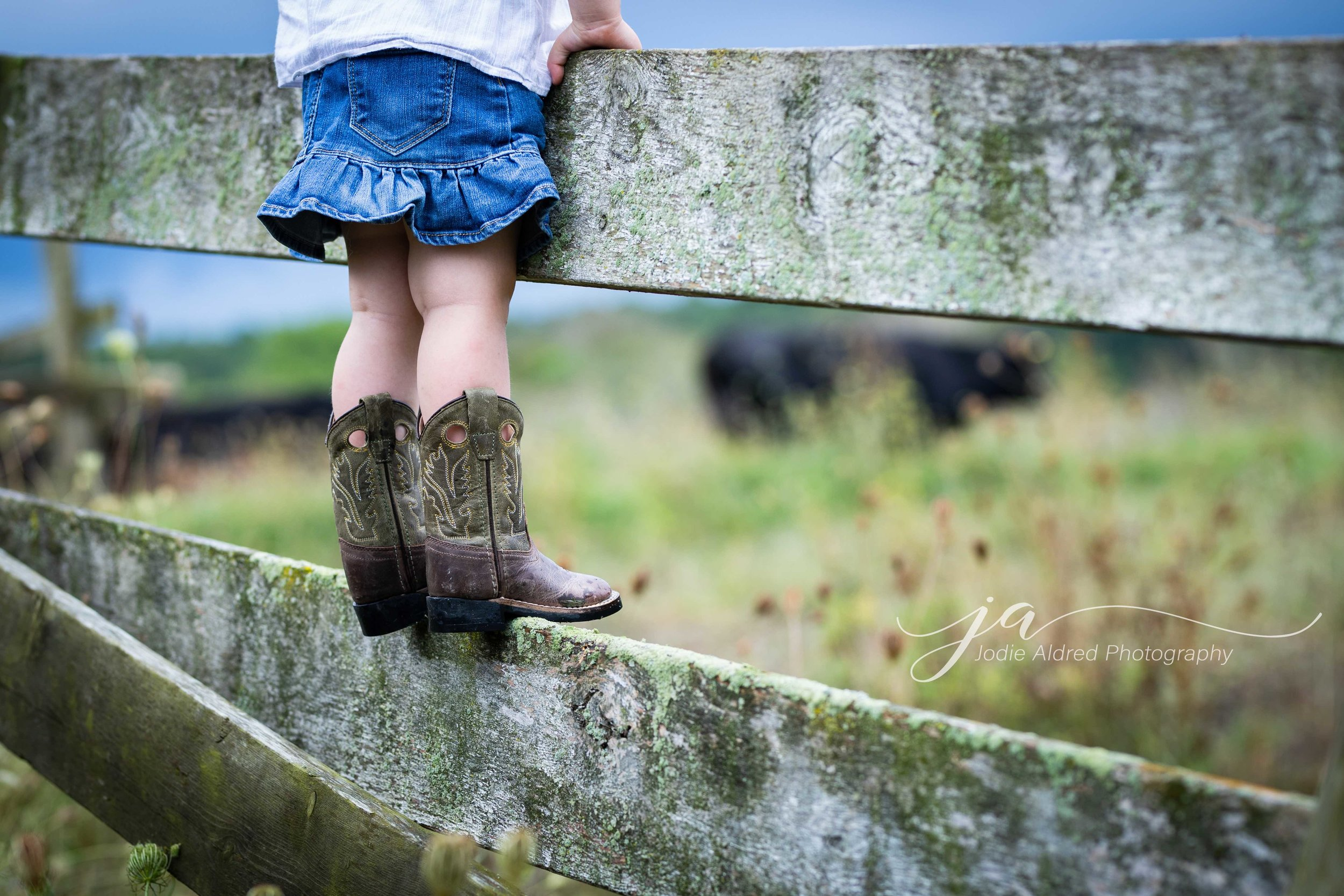 Jodie-Aldred-Photography-Chatham-Kent-Elgin-Middlesex-London-Ontario-Farm-Family-Ontario-Boots-Cowboy.jpg