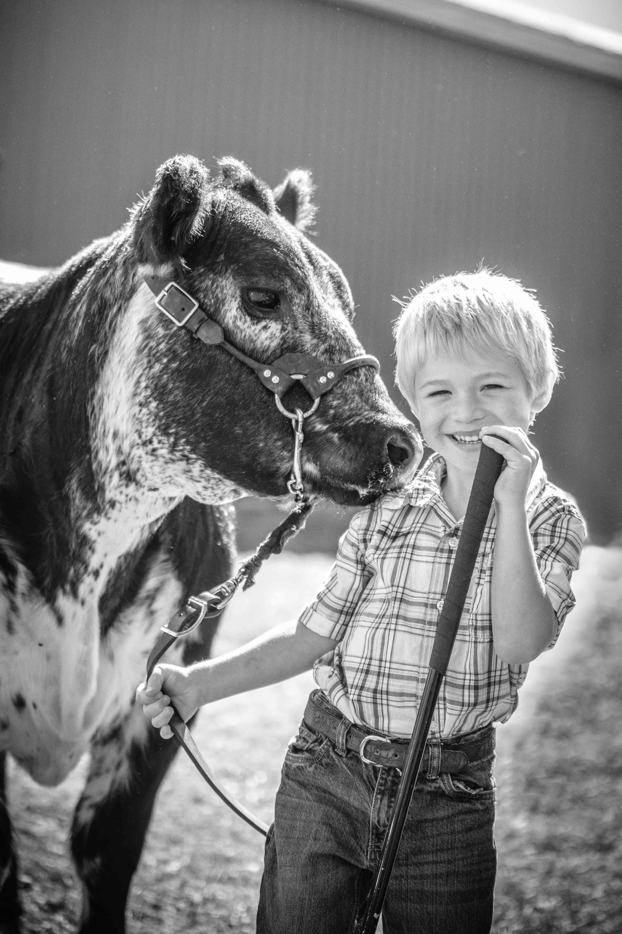 Jodie-Aldred-Photography-Chatham-Kent-Elgin-Middlesex-London-Ontario-Farm-Family-Ontario-Cattle.jpg