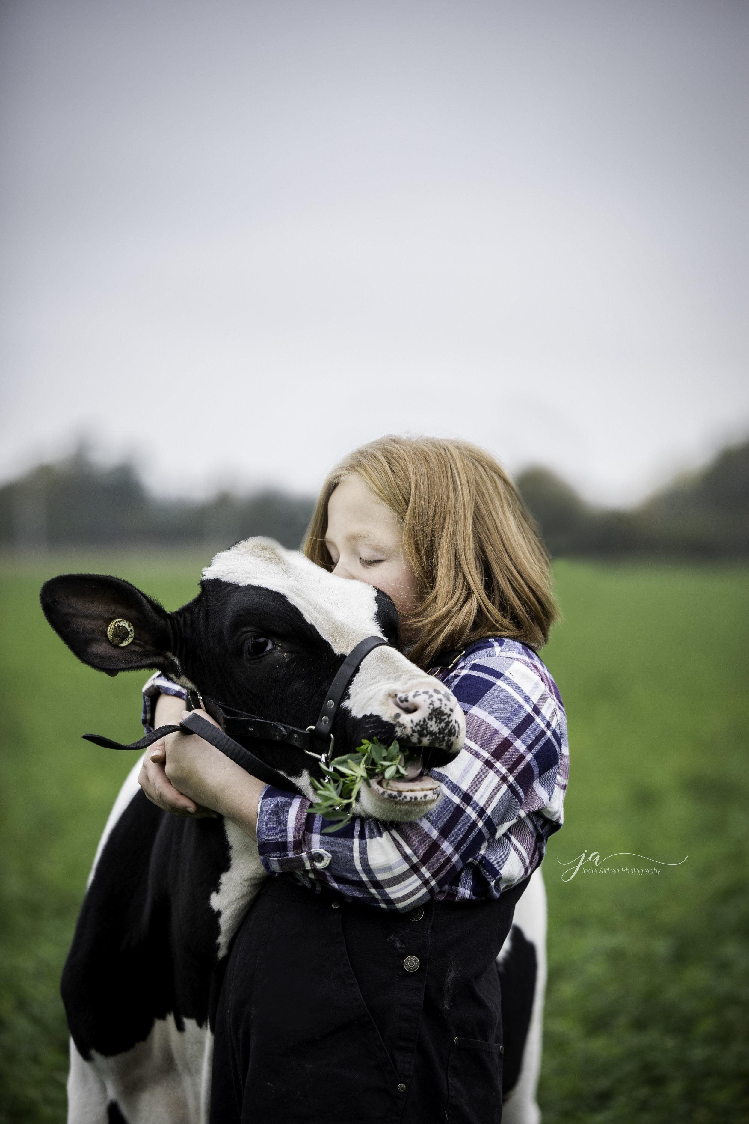 Farming_Agriculture_Dairy_Jodie_Aldred_Landscape.jpg