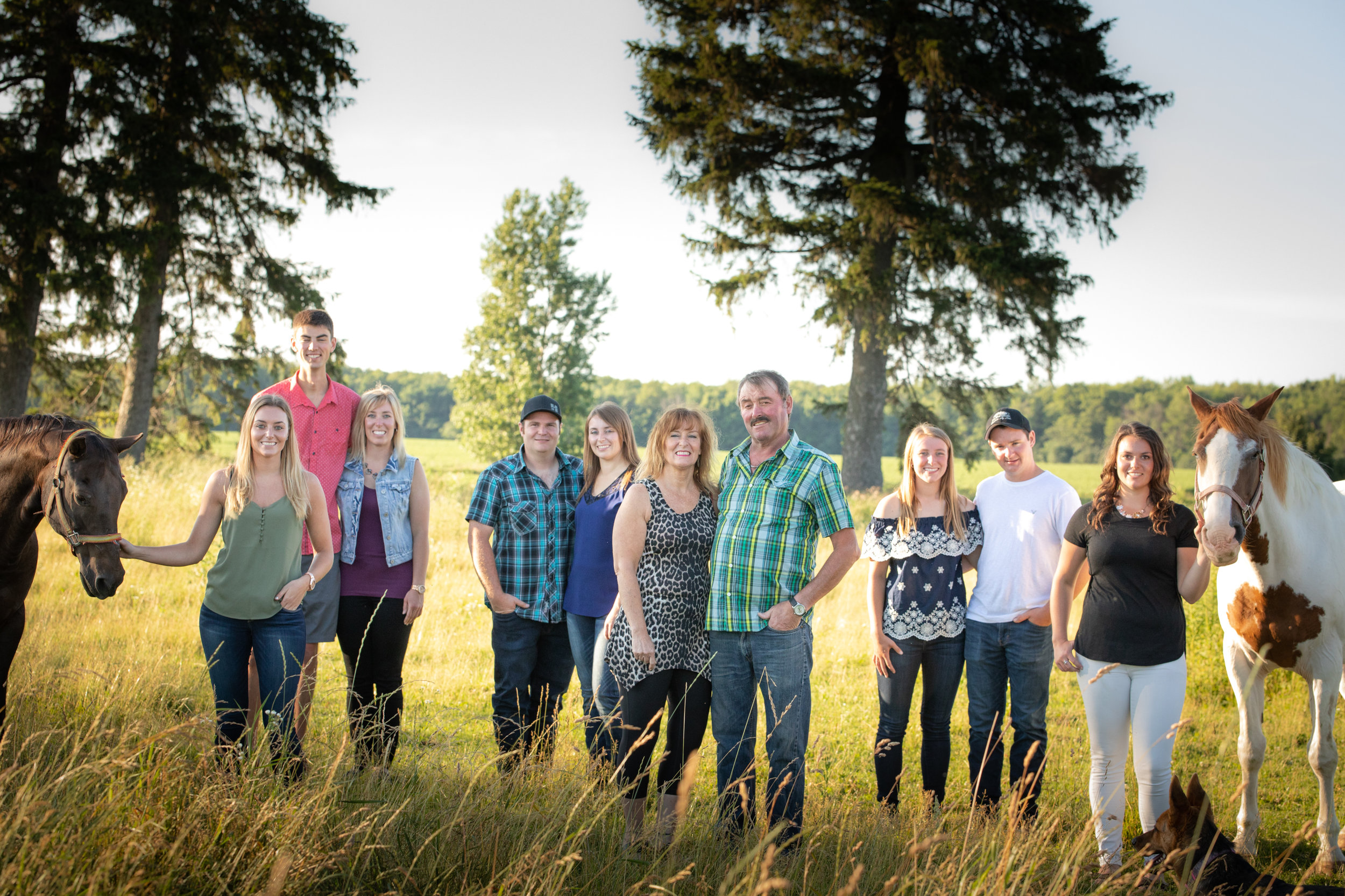 outdoor-Family-horses-agricultural-photographer-jodie-aldred-photography-rural-country-farm-farmers-ontario-london-huron-middlesex-elgin-chatham-elgin.jpg