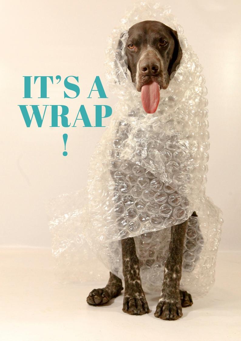 it's a wrap!.jpg