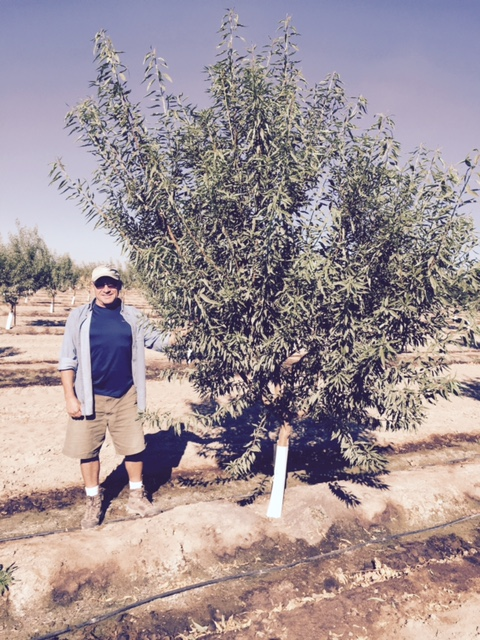 Tad Woody 12 month old almonds Oct 2015.jpg