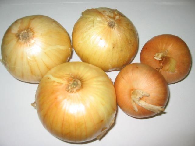 WGS Onions Test  Same grow time  WGS Vegetable Left.jpg