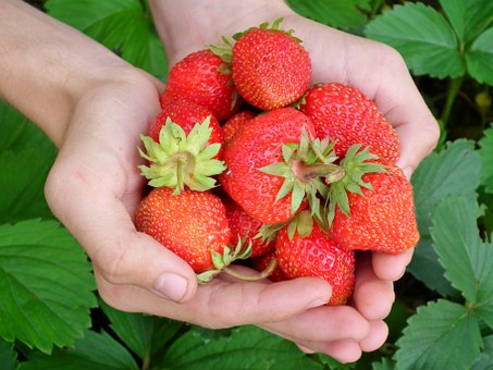 Strawberries you  want  to eat