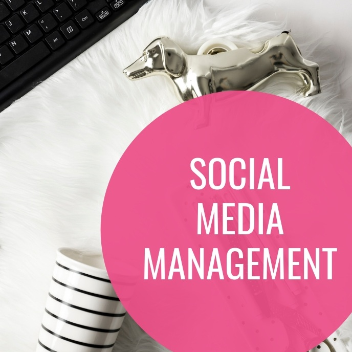 social media management virtual assistant