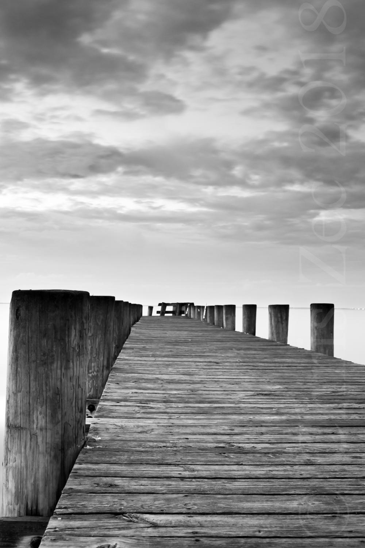 """Morning Dock"", 2009"