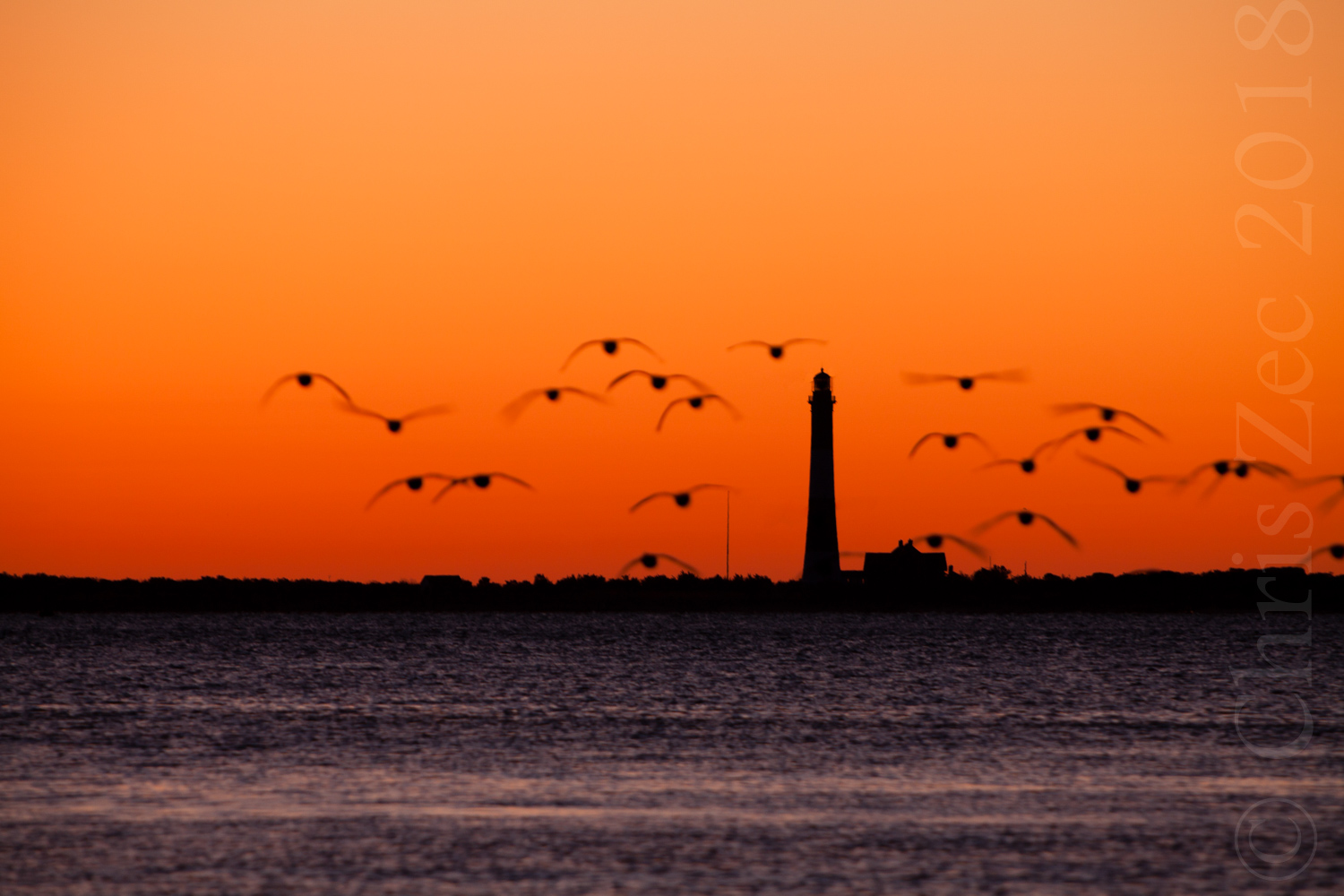 """""""Lighthouse with Flock"""", 2010"""