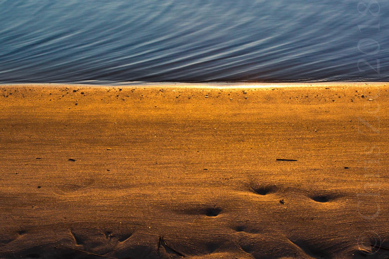 """Golden Shores"", 2013"