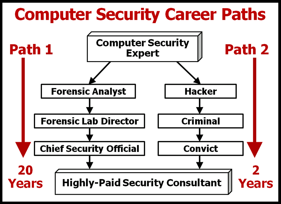 highly paid cybersecurity consultant.png