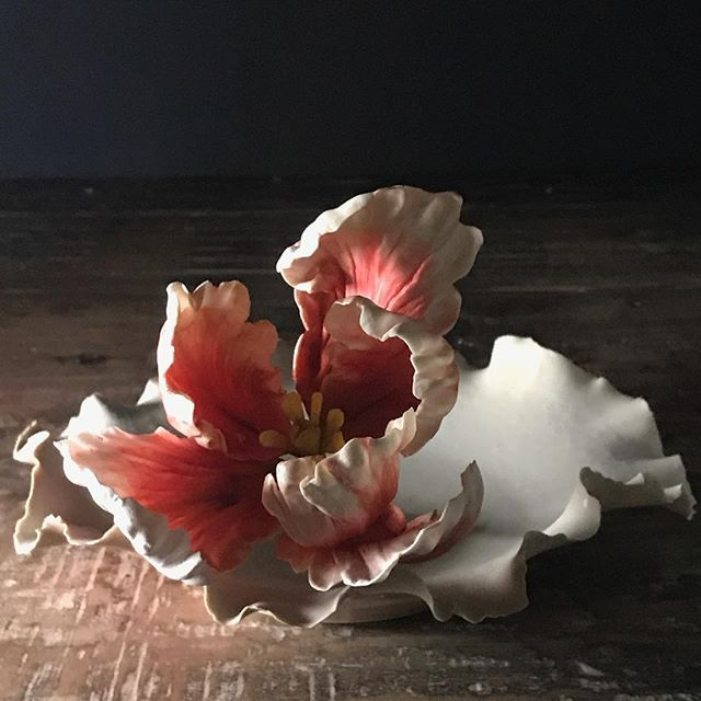 More magic working with photographer @deborahjaffe ... #sugartulip  #gumpasteflowers #cakedecorating #sugarart  #sugardahlia #sugarpeony #sugarroses #artismagic