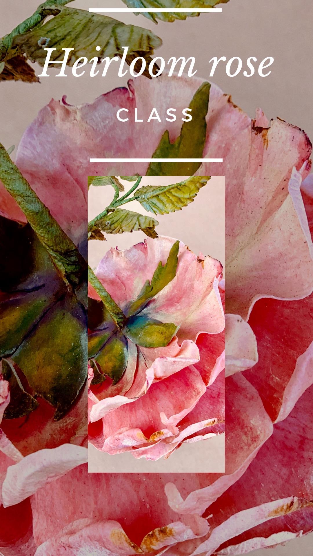 Heirloom Rose Class invitation