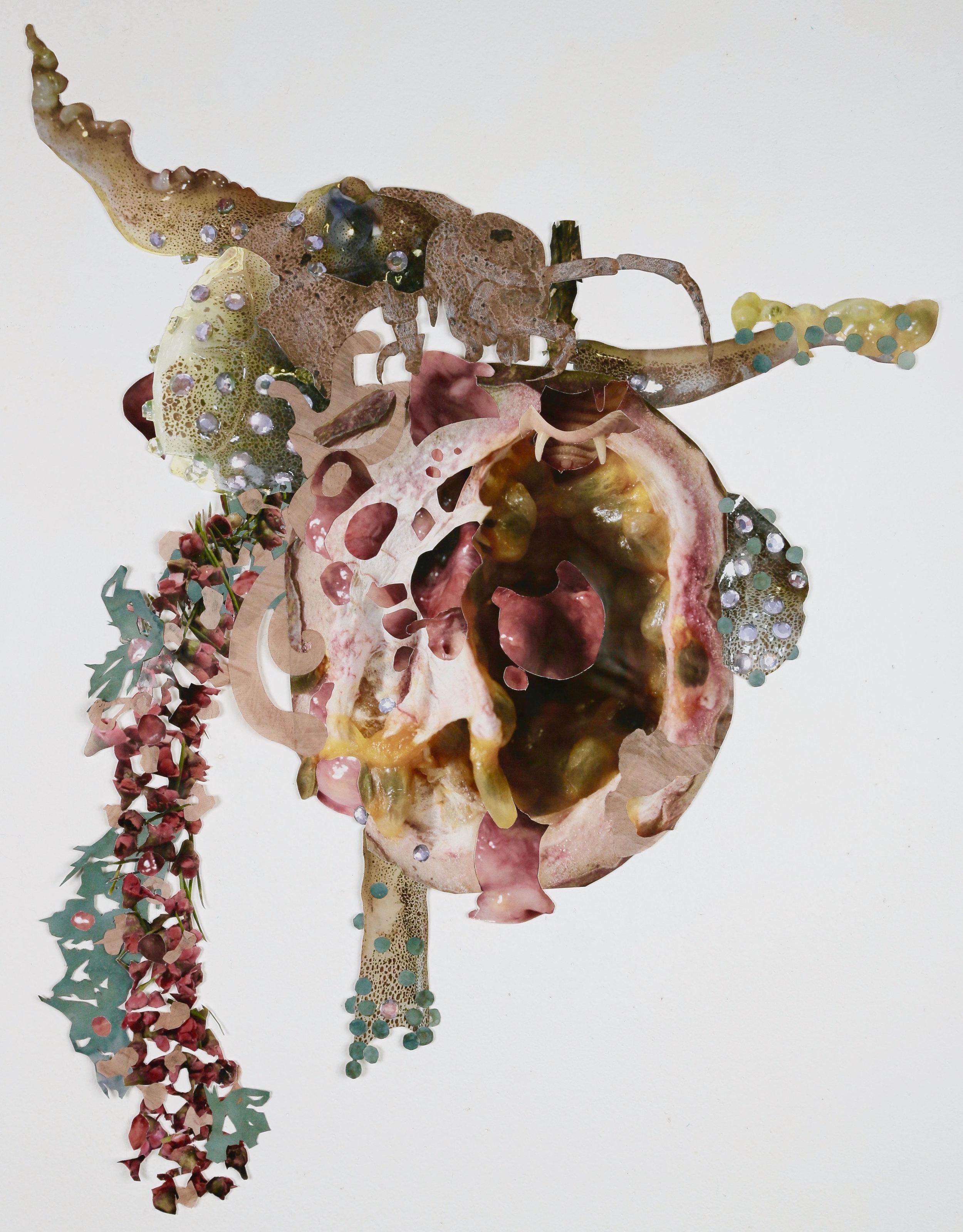 Larval Wreath
