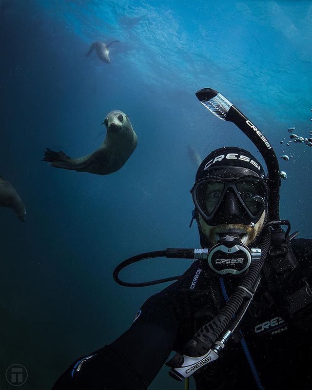 @thurstonphoto getting photobombed by one of the locals at Montague Island! #sealselfie