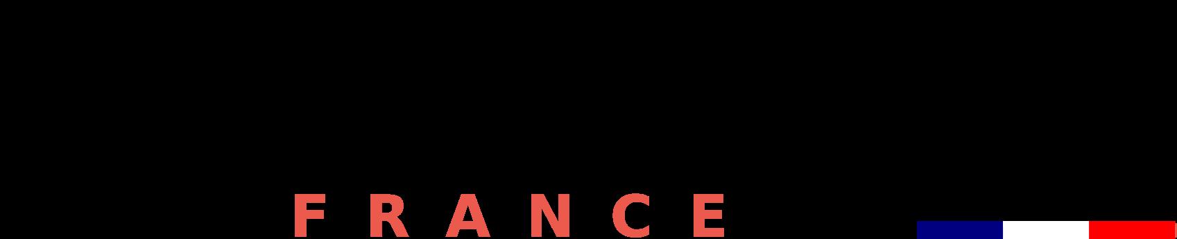 2018_01_02_Leanin_logo_france2.png
