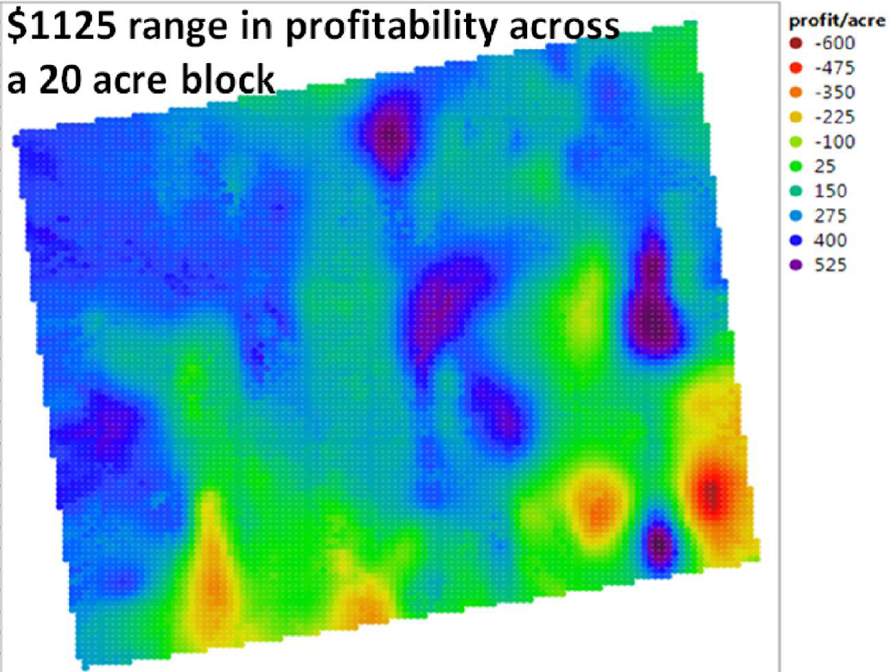 Figure 2: Net Margin Map of a cooperating grower vineyard in Western, NY.