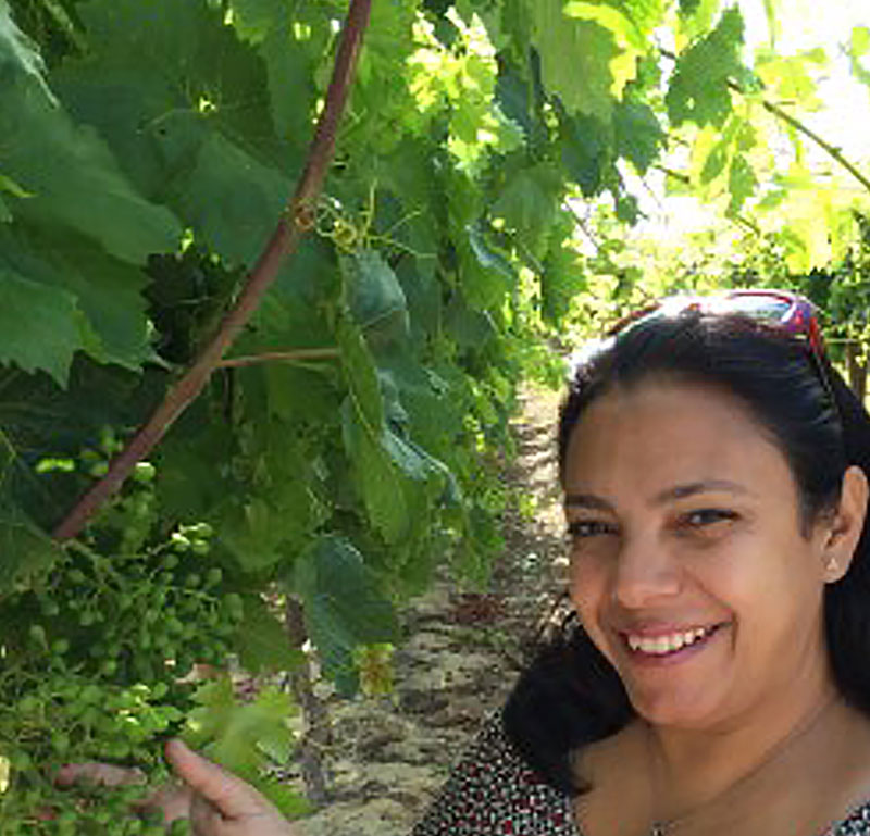 "Maha Afifi, Ph.D. - Viticulture Research ScientistMaha Afifi, Ph.D., Viticulture Research Scientist, California Table Grape Commission. Maha earned her Ph.D. degree in grapevine physiology with an emphasis on anthocyanin biosynthesis and accumulation in grape skins, from Toulouse University, France. After earning her Ph.D., Maha conducted research in Egypt in the field of fruit tree physiology, this research was followed by postdoctoral research in Canada on the mechanism of abiotic stress tolerance in different crops. This broad range of experience allowed Maha to serve as an external examiner for Ph.D. dissertations and carrier promotion degrees in several international universities, and to become an academic reviewer in peer journals.In 2015, Maha proudly joined the California Table Grape Commission to work as part of the viticulture research team. She is involved in a number of viticulture research projects in collaboration with USDA and UC researchers, providing expertise needed to address a number of complex viticulture issues. In addition, Maha is a lead researcher for viticulture research projects related to water management practices and color development in table grapes, to benefit the California table grape industry.Maha's activities for the SCRI ""Efficient Vineyards"" project include providing research direction and table grape viticulture expertise, and assisting with data collection."