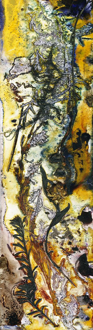 Golden Stream by Renata Buziak