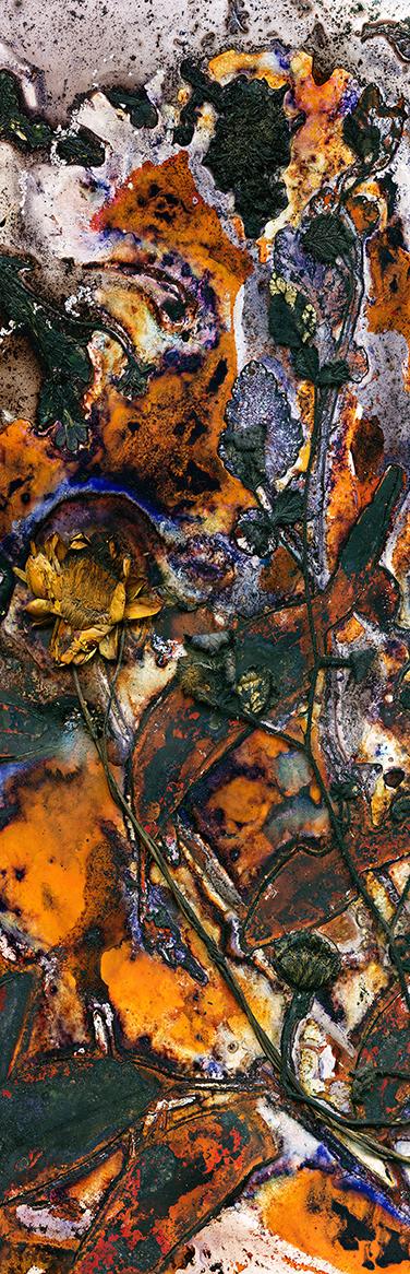 Jaspers Oban by Renata Buziak