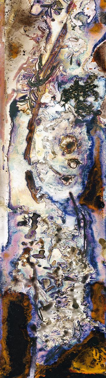 Reflections in the Dam by Renata Buziak