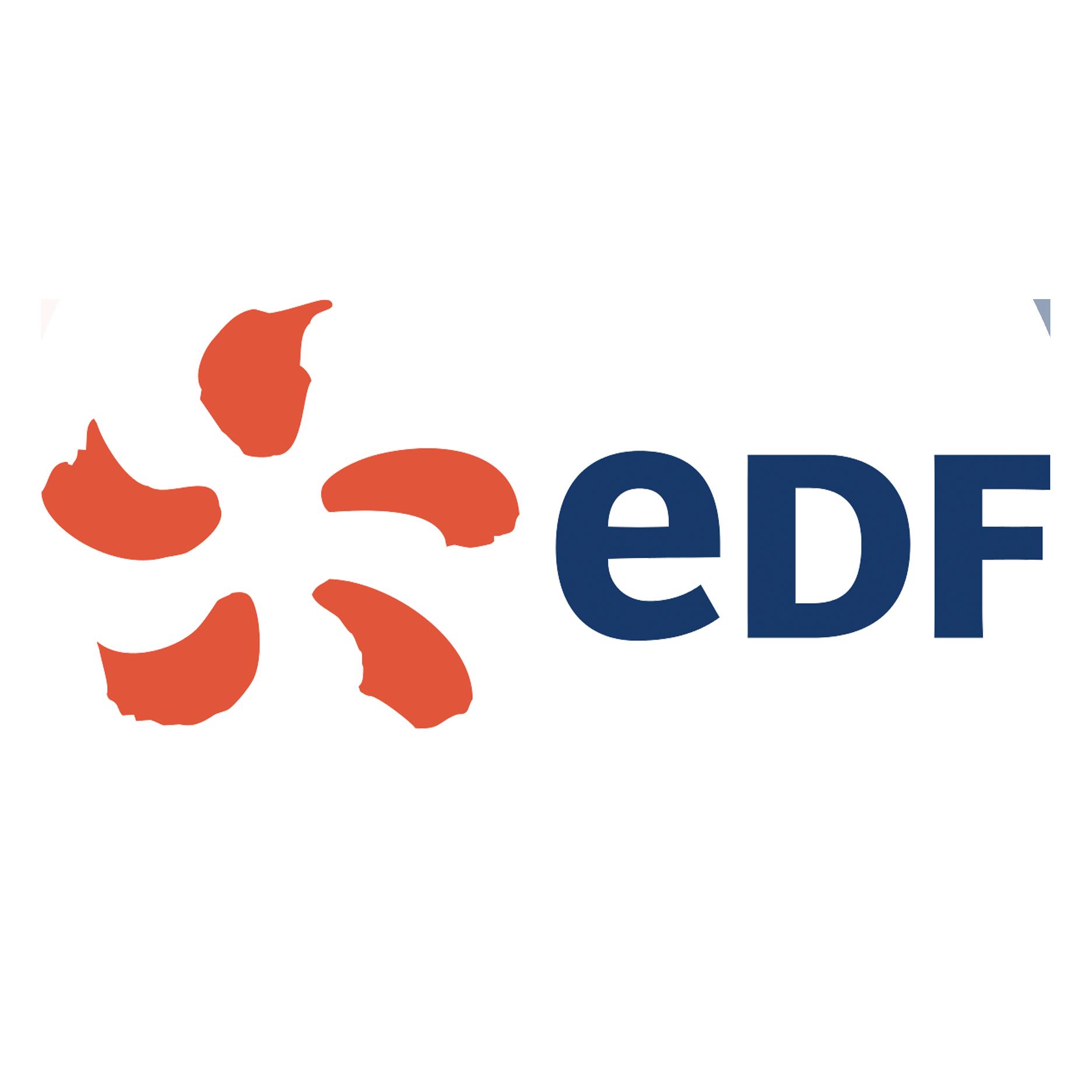 Logo EDF.png