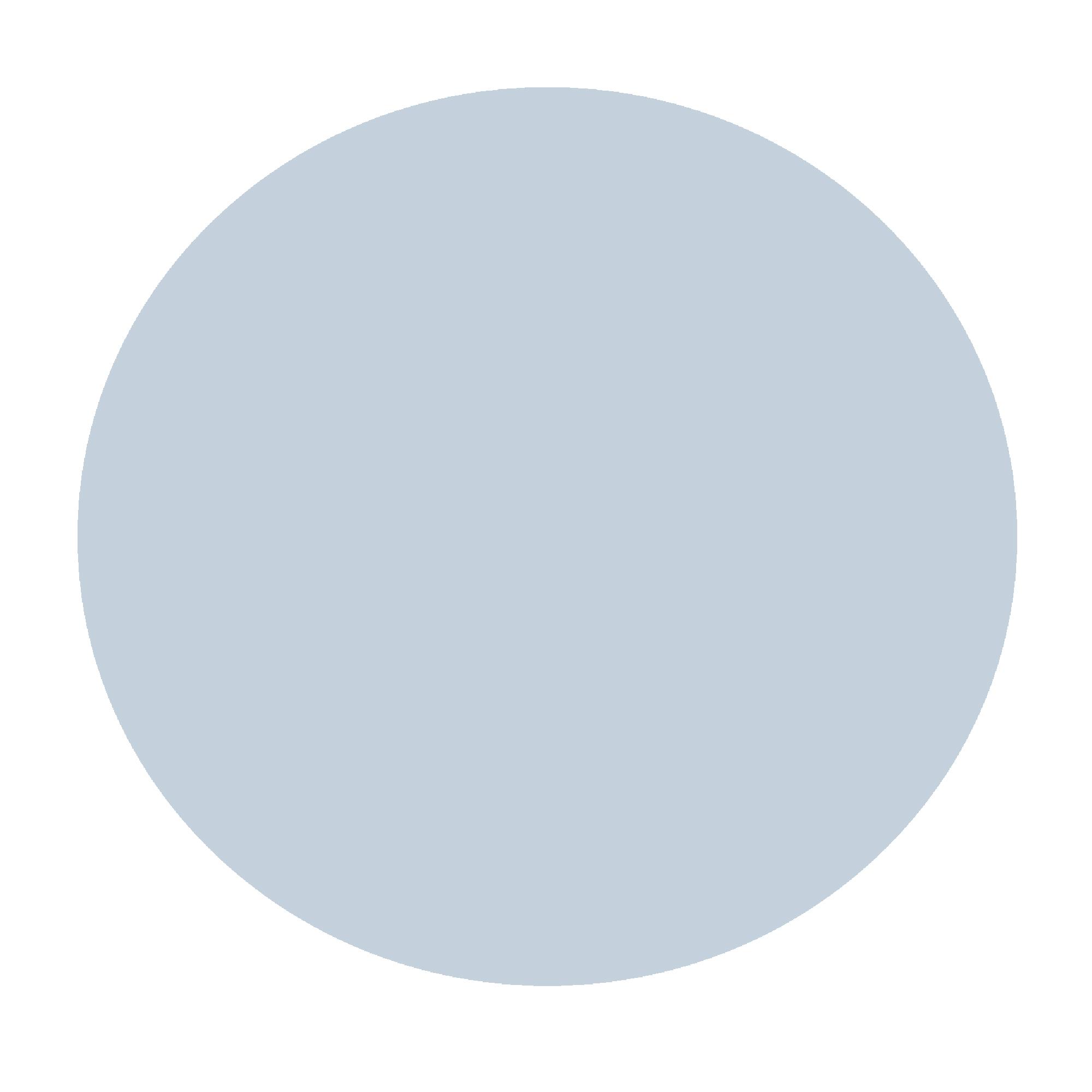 Bluey grey.jpg