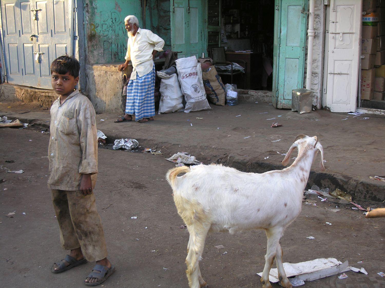 Mumbai - Bombay | child with a goat | Choor bazar | ©sandrine cohen