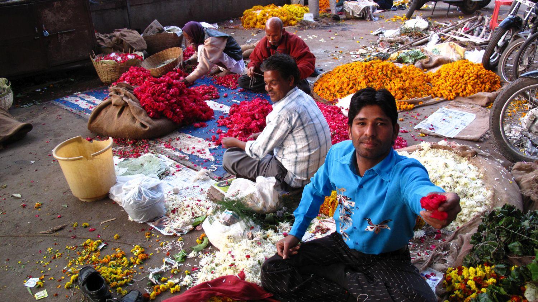 Jaipur | Rajasthan | Pink city | flowers market | Indian give me rose |©sandrine cohen