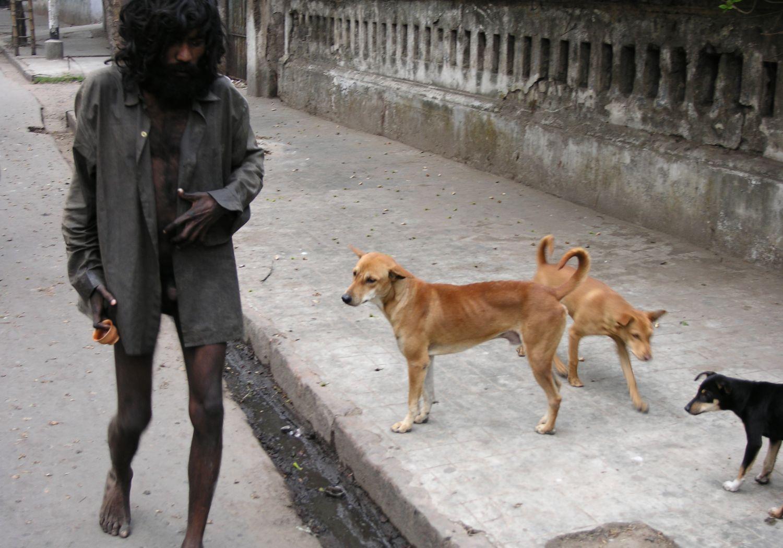 Kolkata - Calcutta   Homeless naked and street dogs   ©sandrine cohen