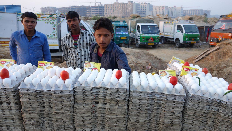 Delhi | Mahipalpur | New buildings and district | street food with eggs |©sandrine cohen