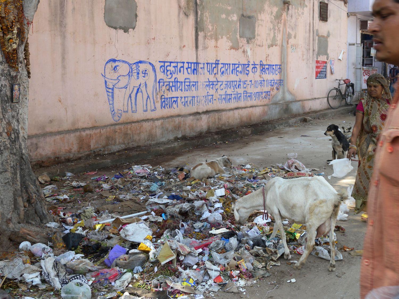 Jaipur | Rajasthan | Pink city | Water supply | Indian coat | Indian garbage | Jaipur street art | ©sandrine cohen